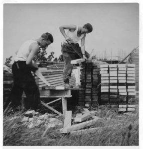 Kreileroord in opbouw databasenr1942