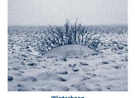 Kroniek 84 Winterhaag kunstzinnige sporen