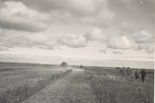 Fotocollectie ir. Mesu. Wieringermeer,1932
